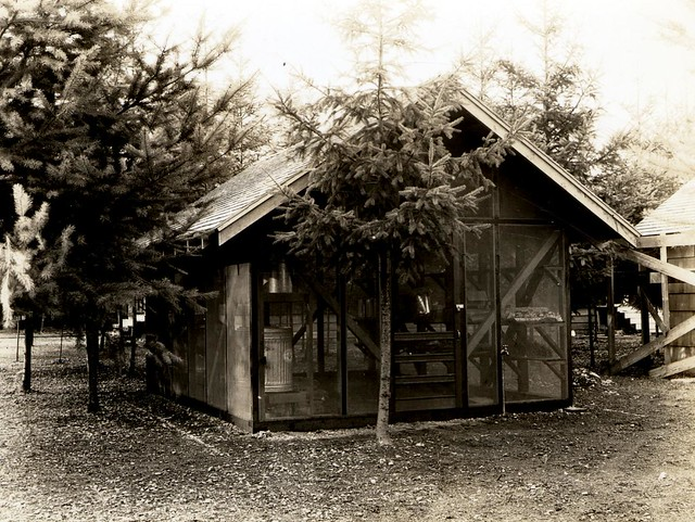 1937. Insectary/field laboratory set up by Robert L. Furniss at the Pack Forest. La Grande, Washington.