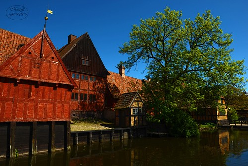 aarhus danmark dänemark dengamleby nikon landscape freilichtmuseum outdoor oldhouses