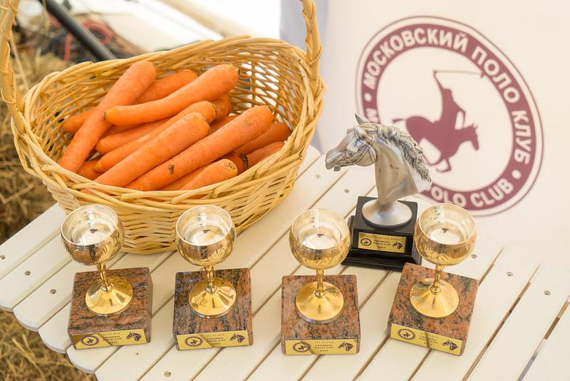 Triumph Polo Cup