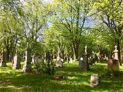Walk through the Cote des Neiges cemetery