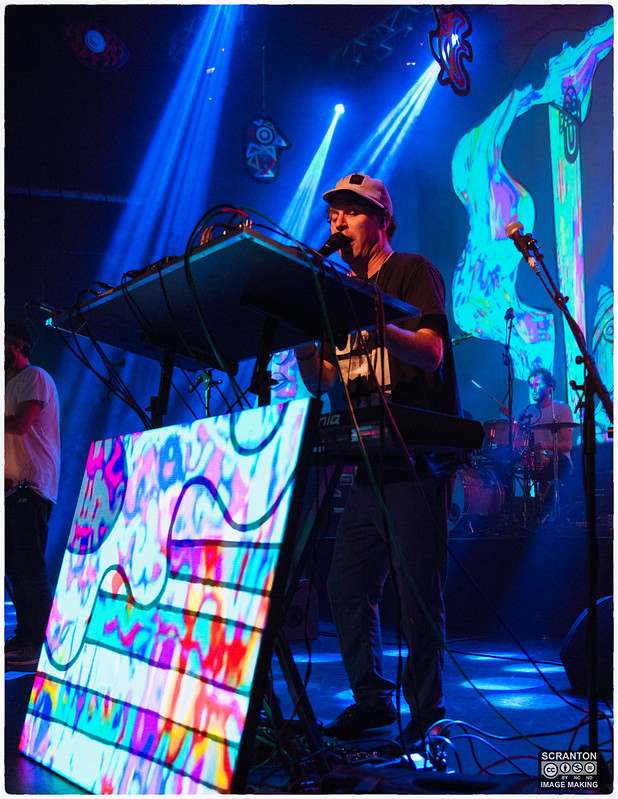 Animal Collective-10.jpg