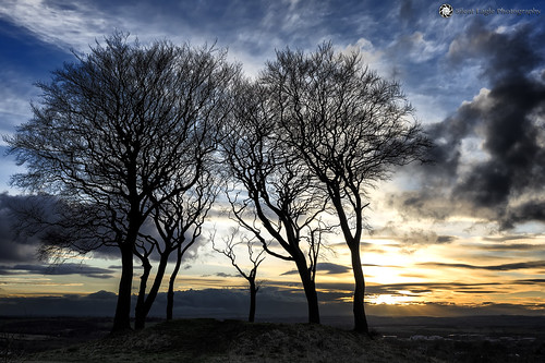 sep silent eagle photography canon canoneos5dmarkiii copthill sevensisters seven sisters round barrow sky nature tree clouds sunset outdoor orange bernacer sunderland northeast tynewear silhouettes