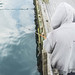 Fishing - Wellington waterfront