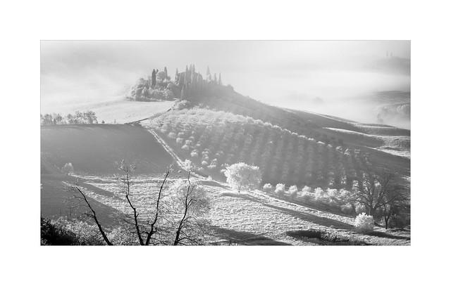 Foggy Belvedere
