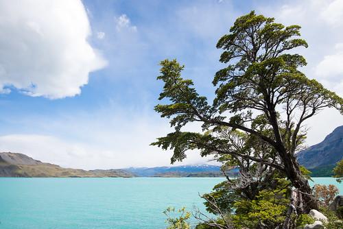 Chile - Torres del Paine | by Ksenia Konyushkova