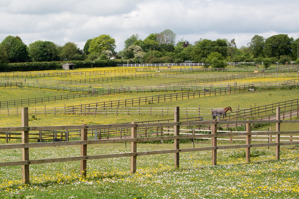Horse Paddocks Princes Risborough to Great Missenden