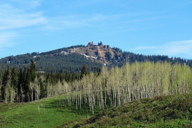 Springtime At Muddy Pass