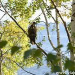 6 Viajefilos en el lago Baikal 089