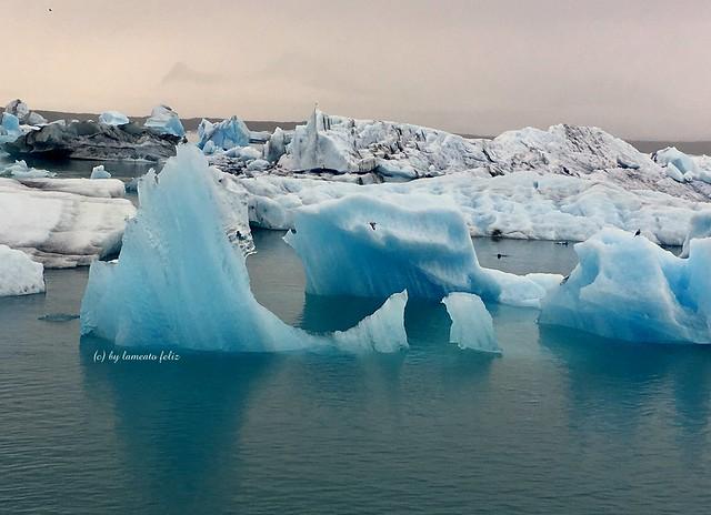 Lago glaciar de Jokulsarlon. Icebergs-Islandia.