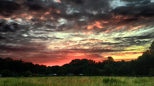gutenmorgen goodmorning wald forest wirse meadow städtisch urban abstrakt abstract ausergewöhnlich extraordinary wolken clouds himmel sky heaven feld field anb030 sonnenaufgang sunrise morgens morning deutschland germany berlin hellersdorf marzahn wuhletal wuhle kaulsdorf shotoniphone iphotography iphonography 6splus iphone6s iphone apple