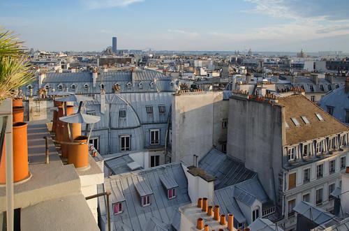 Sur les toits de Paris   by Bee.girl