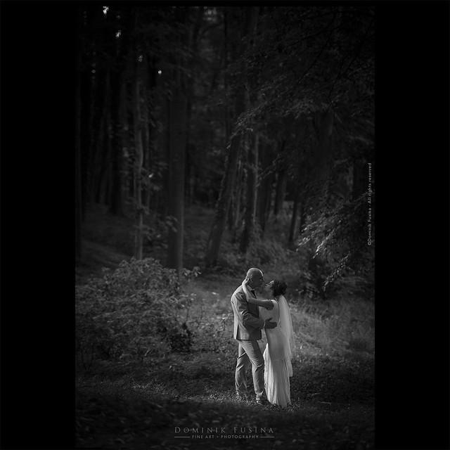 Ray of Light | Audrey & Loïc