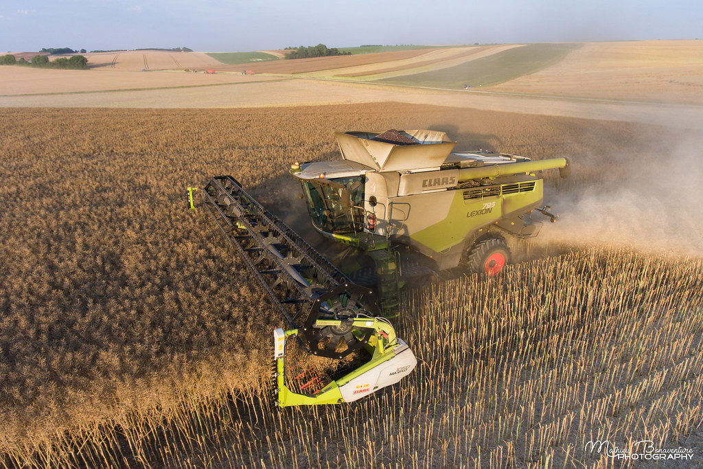 Top CLAAS Lexion 795 TT - Maxflo 1050 | Mathieu Bonaventure | Flickr #KD_35