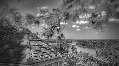 breathtaking beauty sap summer spring view wymanheights florence nebraska omaha iphoneography iphoneographer iphonology iphoneology white black blackandwhite riverbend missouririver missouri river conifer tree pine peak cedarshake shake cedar shingles roof