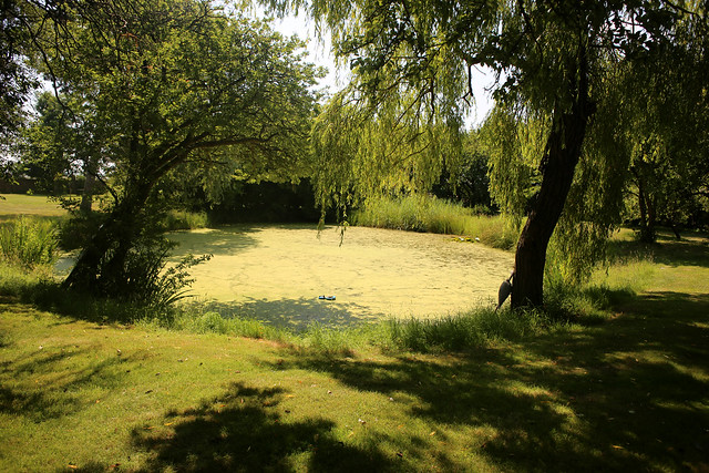 Northey Island pond