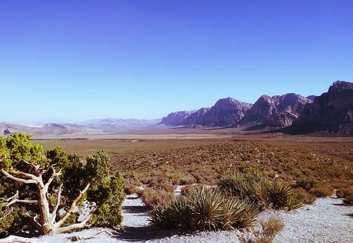 nevada vegas desert redrock redrockcanyon rocks nature northamerica