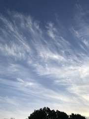 Dunworly Bay Paragliding