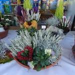 26.10.16 Grabschalen bepflanzen