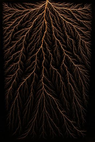 Lichtenberg Figure | by Paul's Lab