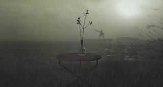 Furillen | by linda_littlebird[andika]