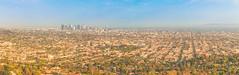 LA Panorama