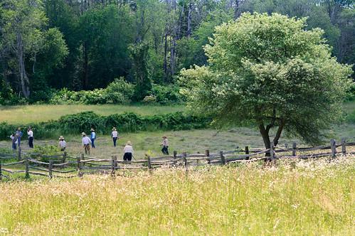 farm field workers grass harvest trees sunlight woods osv osvorg sturbridge village fence landscape hay chancyrendezvous davelawler blurgasm lawler