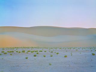 Ridge Burn   by Doha Sam