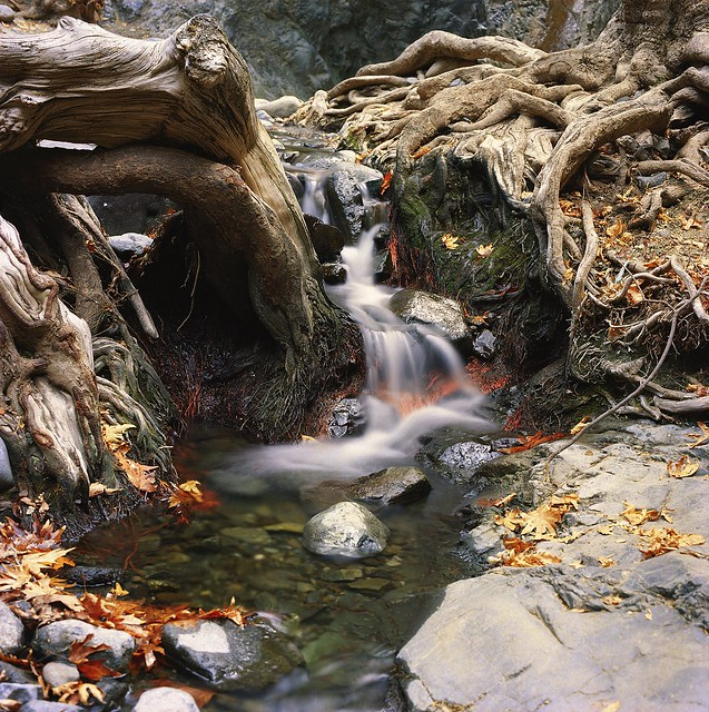 Millomeri brook, Troodos