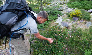 Jon stops to smell the roses | by danlmarmot