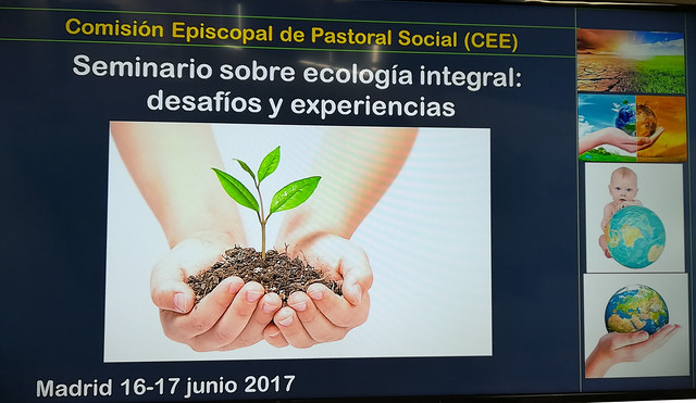 Seminario sobre ecología integral