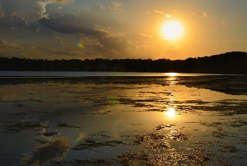 lakeharriet harriet lyndalegardens mpls minneapolis mn minnesota lake lakes landof10000lakes twincities midwest usa america nikon nikkor 35mm d7000 2017 summer july sunrise sunset sun reflection bandshell park grandrounds scenicbyway