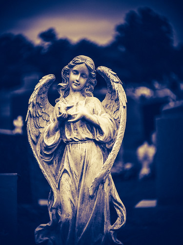 Angel | by rickmcnelly