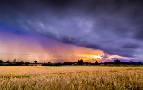 Rainbow Colours (O26b) | by Darblanc ( http://darblanc.com )