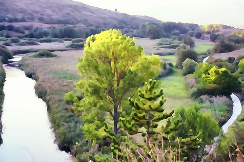 sony sonyalpha italy italia paesaggio landscape travel adventure nature scenic exploration view vista breathtaking tranquil tranquility serene serenity calm marioottaviani river fiume countryroad stradadicampagna waterpainting pictureeffects paint collide tree
