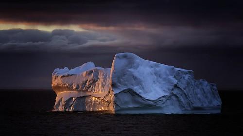 newfoundland icebergs sunset ocean