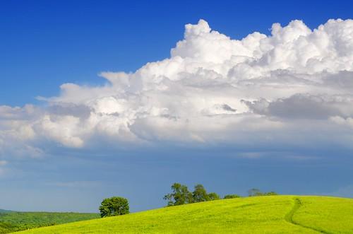 cloud sky nature outdoors hiking green spring field blue 60mm nikon farm horsebarnhill storrs connecticut newengland