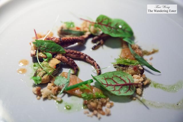 Octopus, trout, chili, hazelnuts