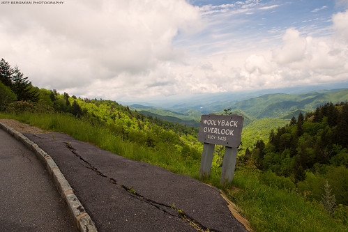 blueridgeparkway northcarolina woolybackoverlook overlook view blueridge nc nature mountains trees foilage