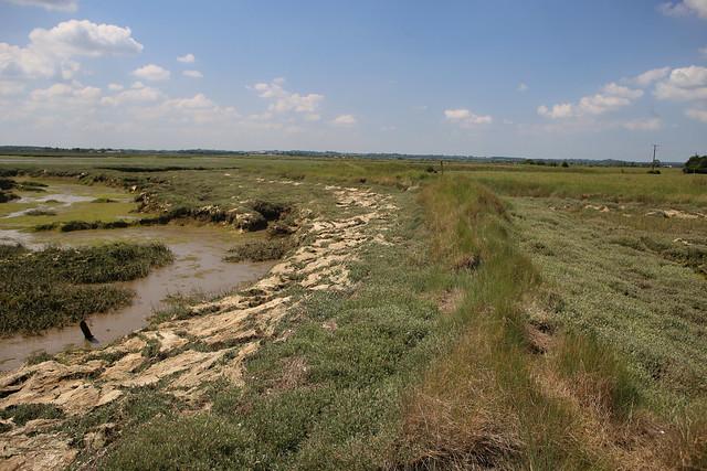 Marshes on Northey Island