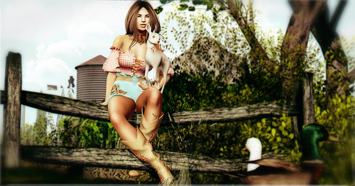 Let Me Be Your Country Girl   by crate.