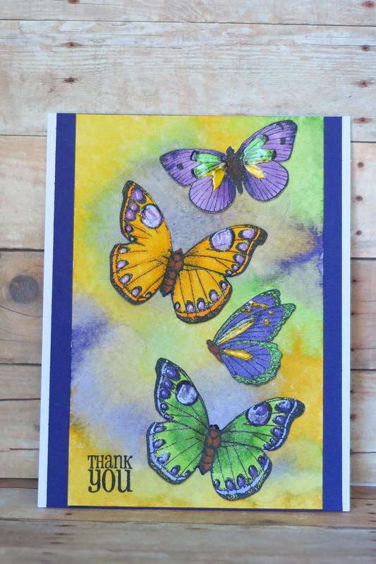 Bright Butterflies Thank You