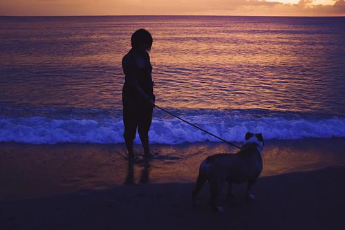 fuji x100s englishbulldog sunset ilocos vigan bulldog silhouette