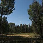 Pond along Signal Mountain Trail