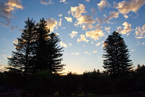 sunrise yountville napa