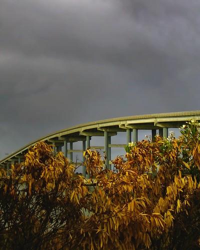 highway structure autumn architecture blackpointboatlaunch route37 novato marin blackpoint bridge petalumariver