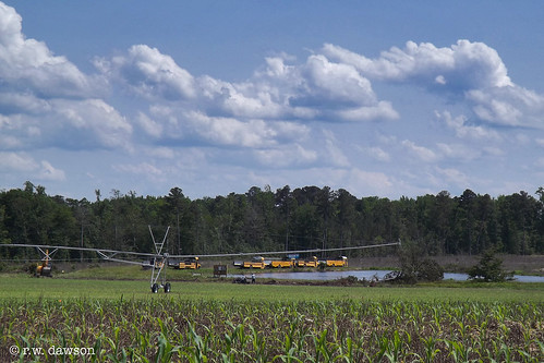 dinwiddiecounty virginia va usa landscape farm oldschoolbus tabacco haulers field irrigation