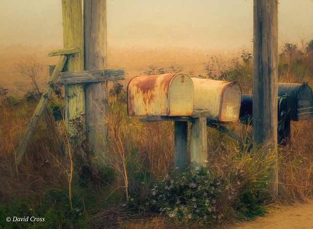 Rural Mailboxes Near Ano Nuevo (Foggy Day Edition)