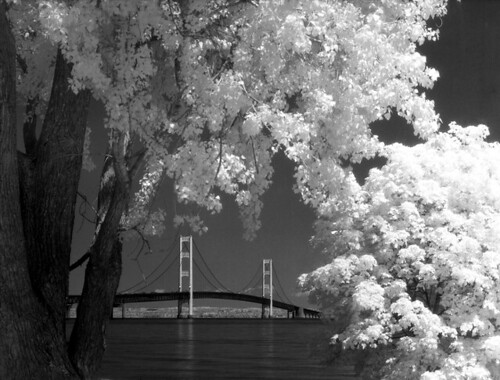 Mighty Mac Infrared | by Bronica John