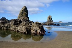 Minus tide at Cannon Beach June 2015