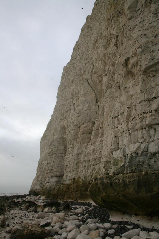 The cliffs near Seaford Head